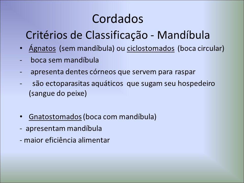 Critérios de Classificação - Mandíbula