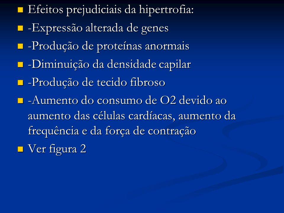 Efeitos prejudiciais da hipertrofia: