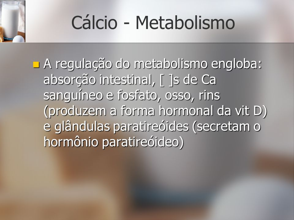 Cálcio - Metabolismo