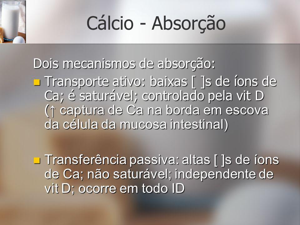 Cálcio - Absorção Dois mecanismos de absorção: