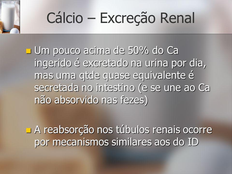 Cálcio – Excreção Renal
