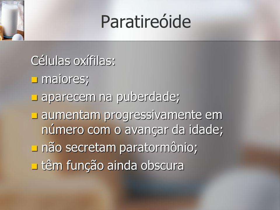 Paratireóide Células oxífilas: maiores; aparecem na puberdade;