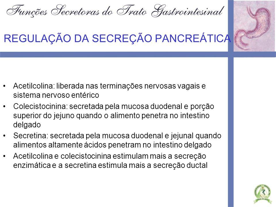 REGULAÇÃO DA SECREÇÃO PANCREÁTICA