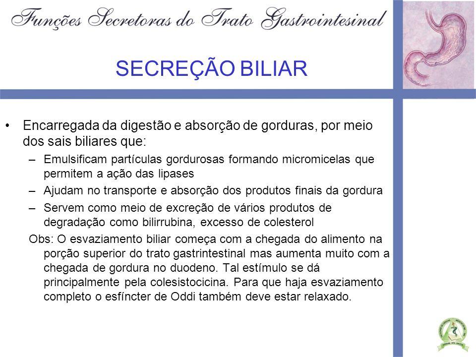 SECREÇÃO BILIAR Encarregada da digestão e absorção de gorduras, por meio dos sais biliares que: