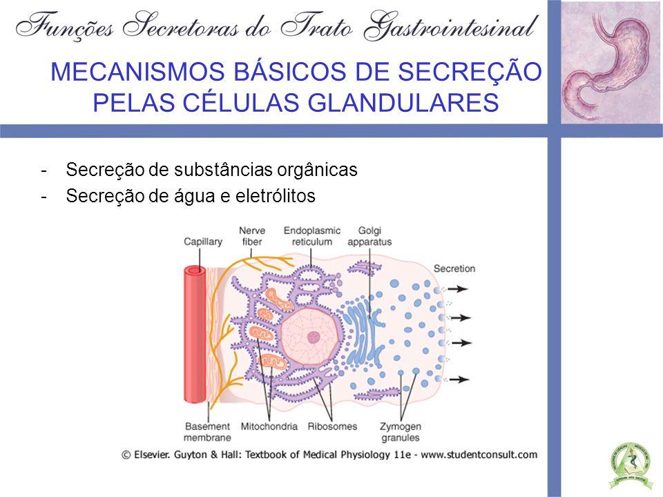 MECANISMOS BÁSICOS DE SECREÇÃO PELAS CÉLULAS GLANDULARES