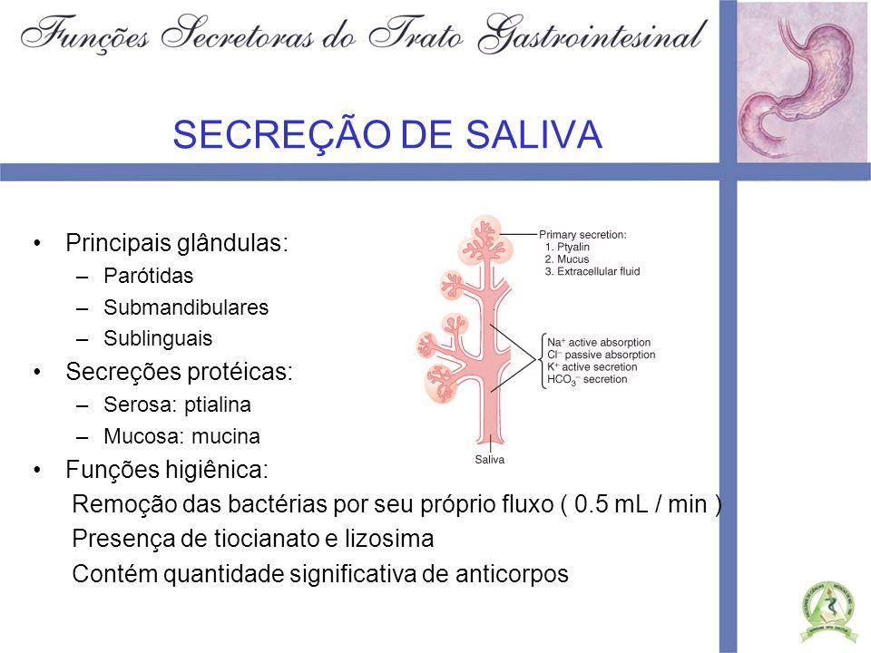 SECREÇÃO DE SALIVA Principais glândulas: Secreções protéicas: