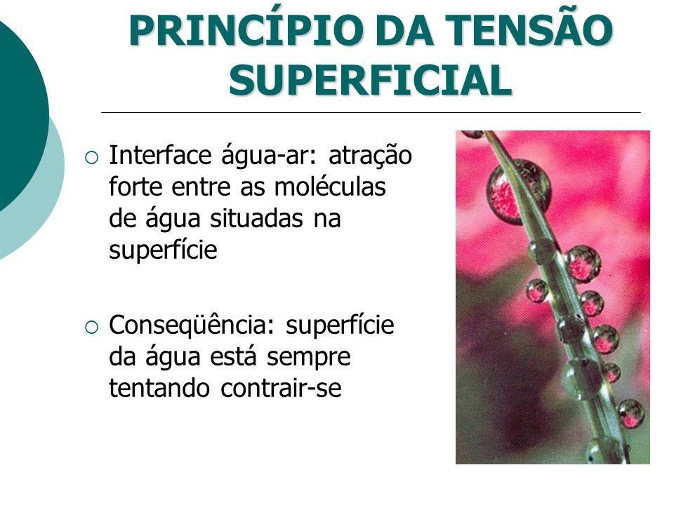 PRINCÍPIO DA TENSÃO SUPERFICIAL
