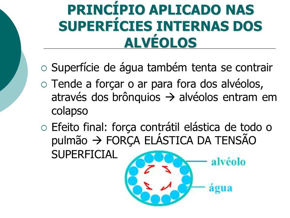 PRINCÍPIO APLICADO NAS SUPERFÍCIES INTERNAS DOS ALVÉOLOS