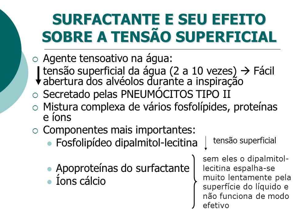 SURFACTANTE E SEU EFEITO SOBRE A TENSÃO SUPERFICIAL