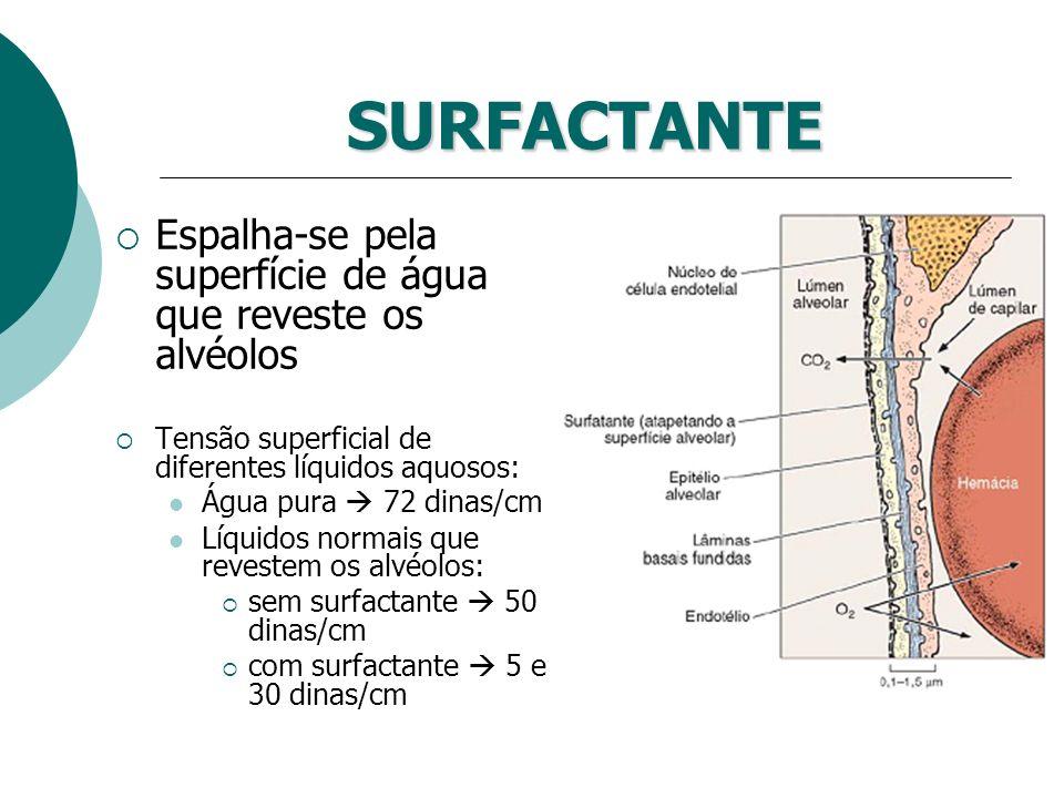 SURFACTANTE Espalha-se pela superfície de água que reveste os alvéolos