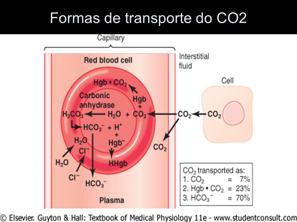 Formas de transporte do CO2