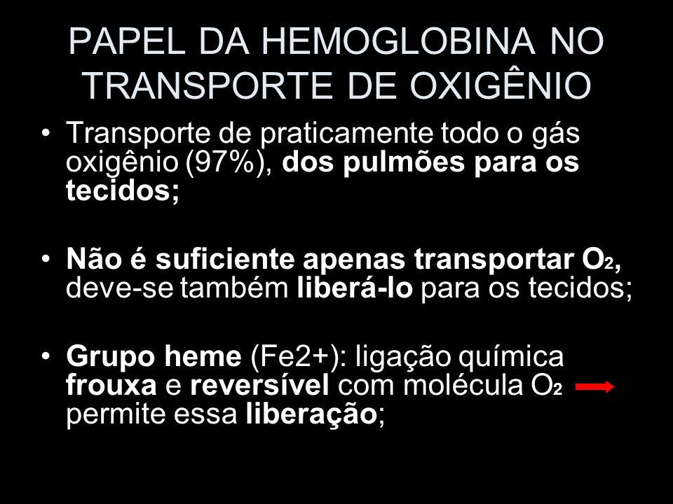 PAPEL DA HEMOGLOBINA NO TRANSPORTE DE OXIGÊNIO