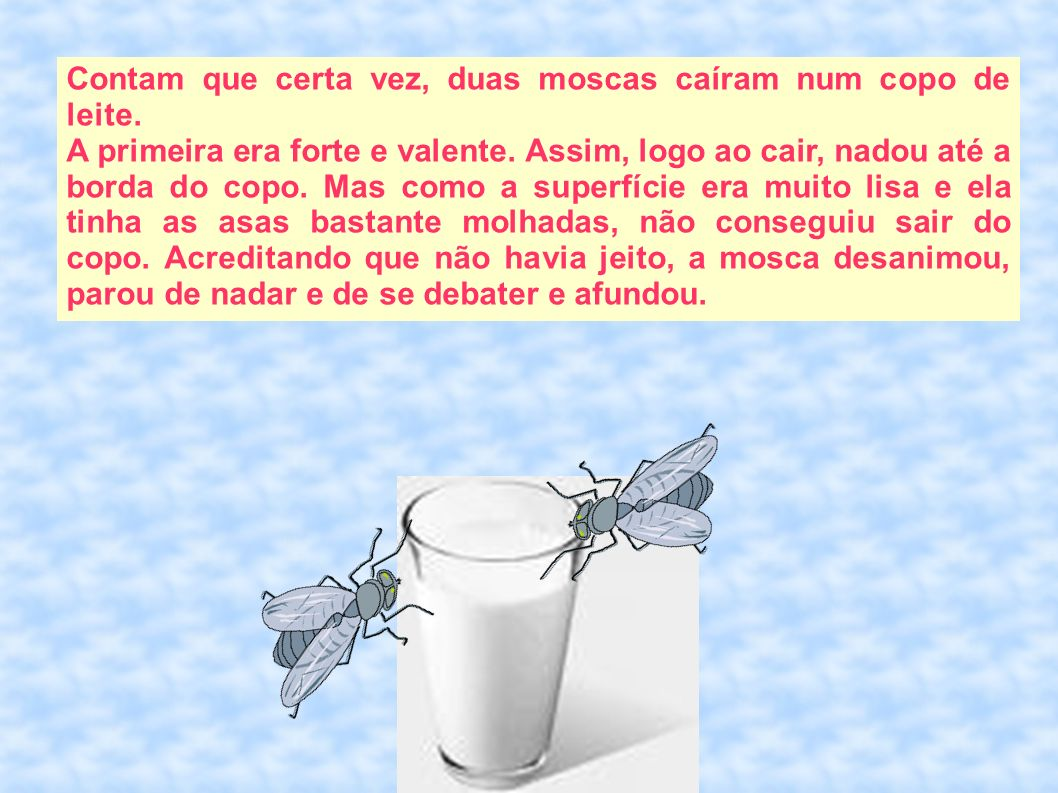 Contam que certa vez, duas moscas caíram num copo de leite.