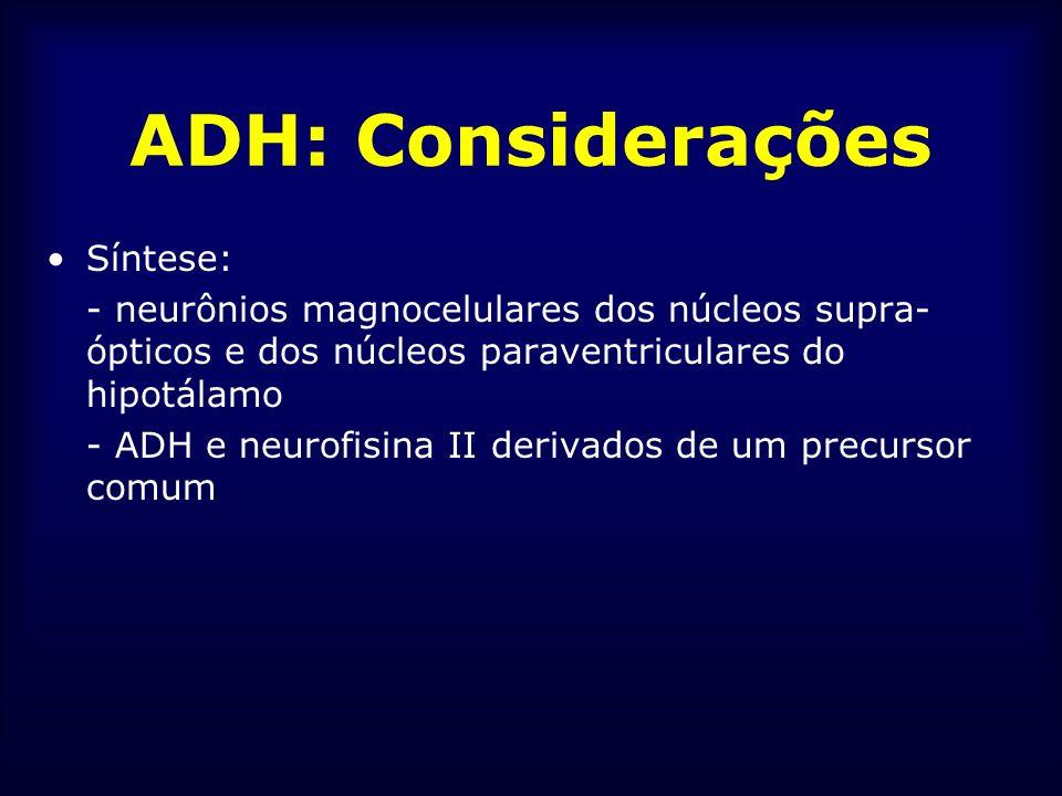 ADH: Considerações Síntese: