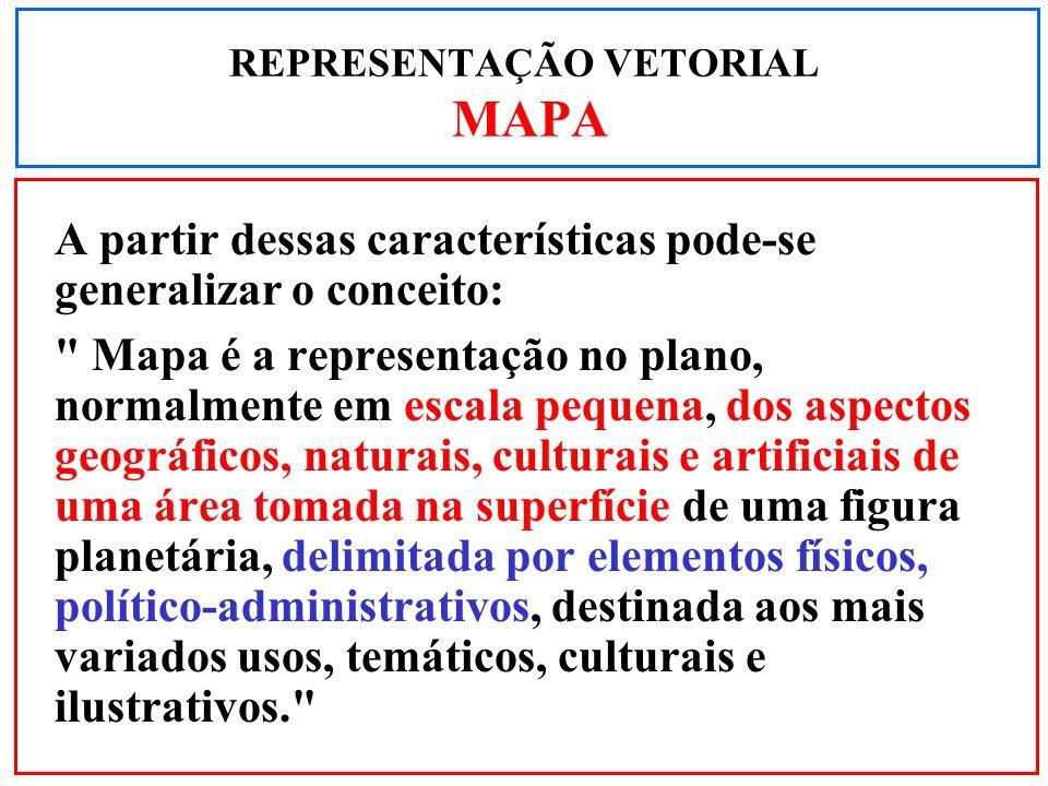 REPRESENTAÇÃO VETORIAL MAPA