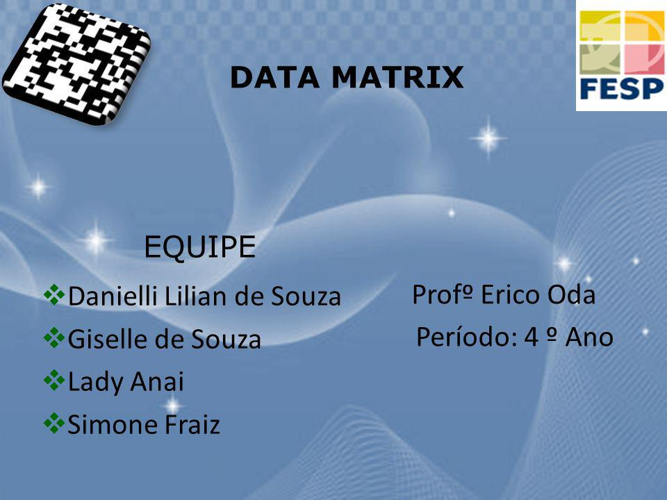 DATA MATRIX EQUIPE. Danielli Lilian de Souza. Giselle de Souza. Lady Anai. Simone Fraiz. Profº Erico Oda.