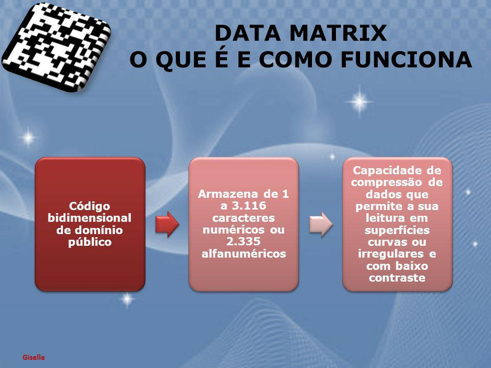 DATA MATRIX O QUE É E COMO FUNCIONA