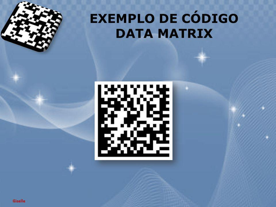 EXEMPLO DE CÓDIGO DATA MATRIX
