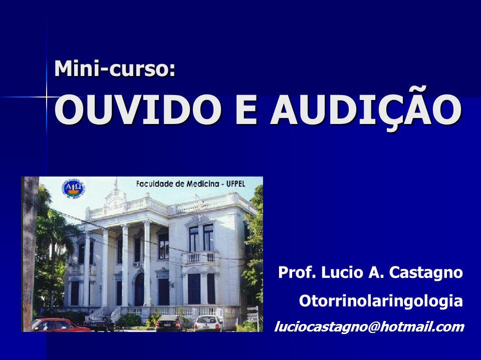 Mini-curso: OUVIDO E AUDIÇÃO