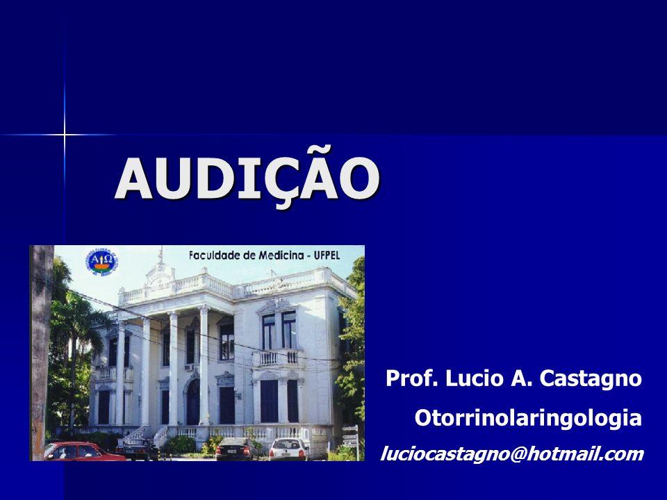 AUDIÇÃO Prof. Lucio A. Castagno Otorrinolaringologia
