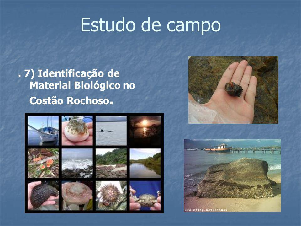 Estudo de campo . 7) Identificação de Material Biológico no Costão Rochoso.