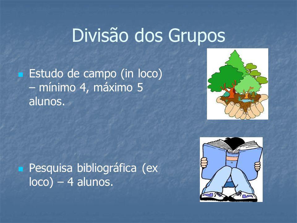 Divisão dos Grupos Estudo de campo (in loco) – mínimo 4, máximo 5 alunos.