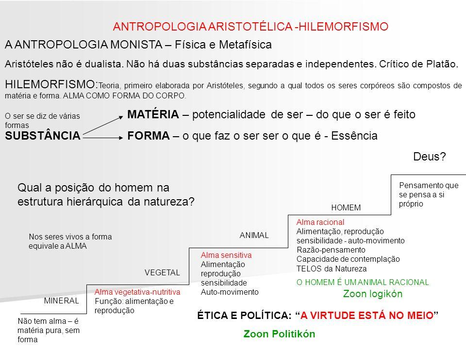 ANTROPOLOGIA ARISTOTÉLICA -HILEMORFISMO