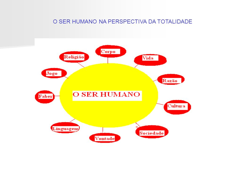 O SER HUMANO NA PERSPECTIVA DA TOTALIDADE