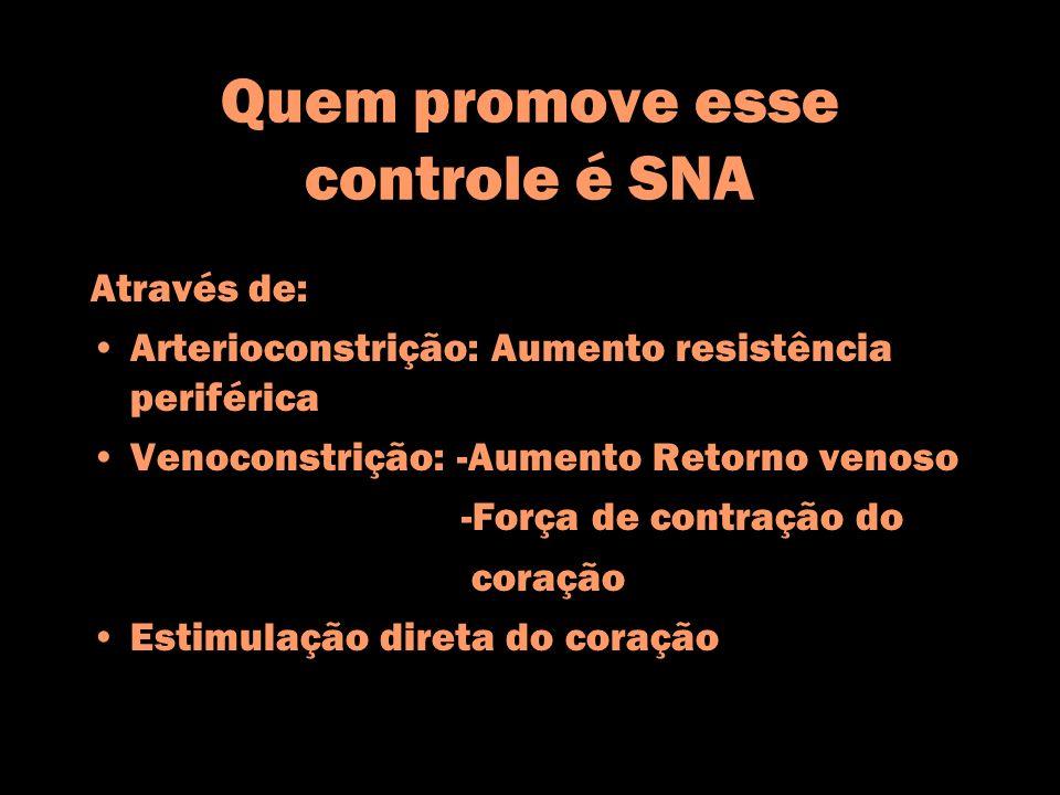 Quem promove esse controle é SNA