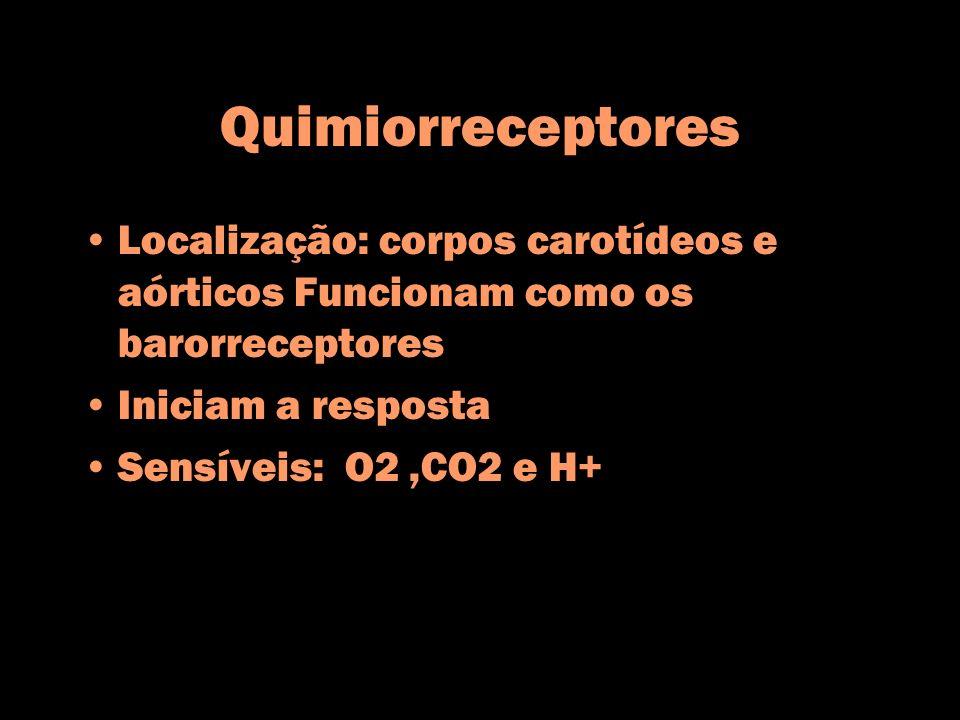 Quimiorreceptores Localização: corpos carotídeos e aórticos Funcionam como os barorreceptores. Iniciam a resposta.