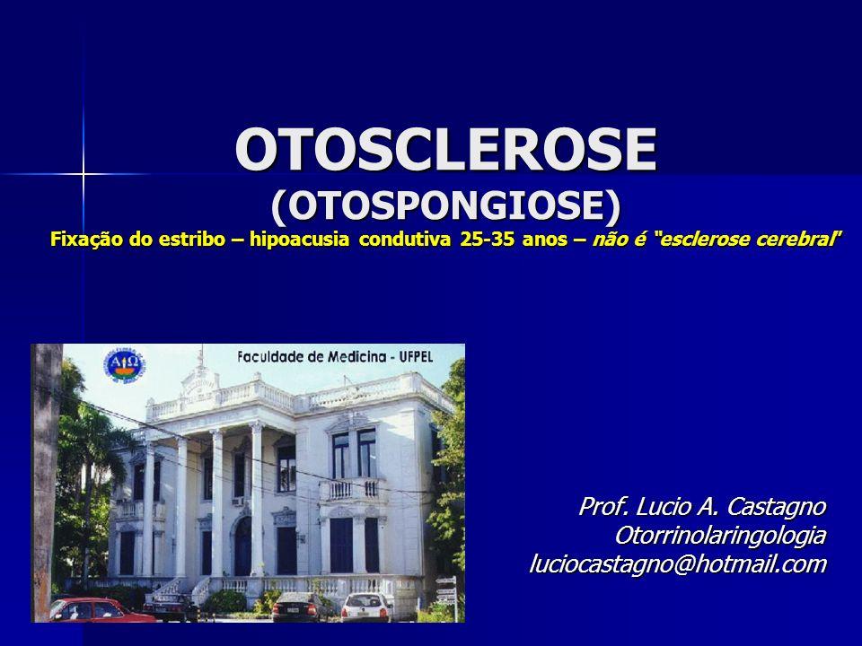 Prof. Lucio A. Castagno Otorrinolaringologia luciocastagno@hotmail.com