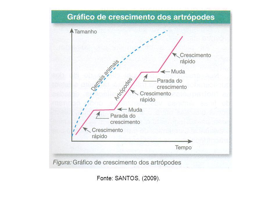 Fonte: SANTOS, (2009).