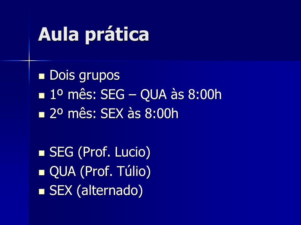 Aula prática Dois grupos 1º mês: SEG – QUA às 8:00h