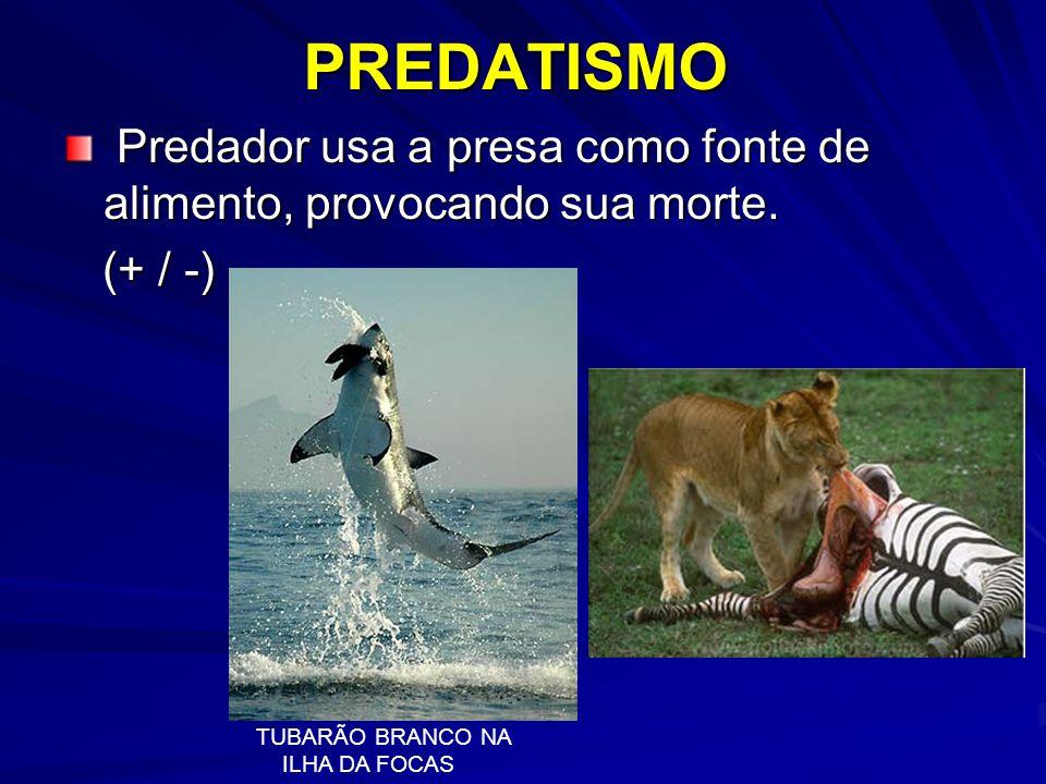 PREDATISMO Predador usa a presa como fonte de alimento, provocando sua morte. (+ / -) TUBARÃO BRANCO NA.