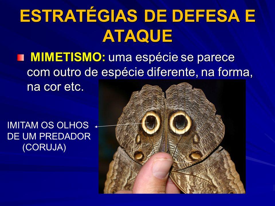 ESTRATÉGIAS DE DEFESA E ATAQUE