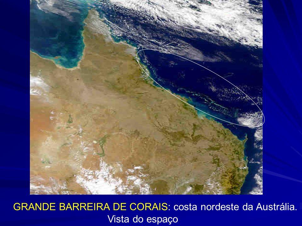 GRANDE BARREIRA DE CORAIS: costa nordeste da Austrália.