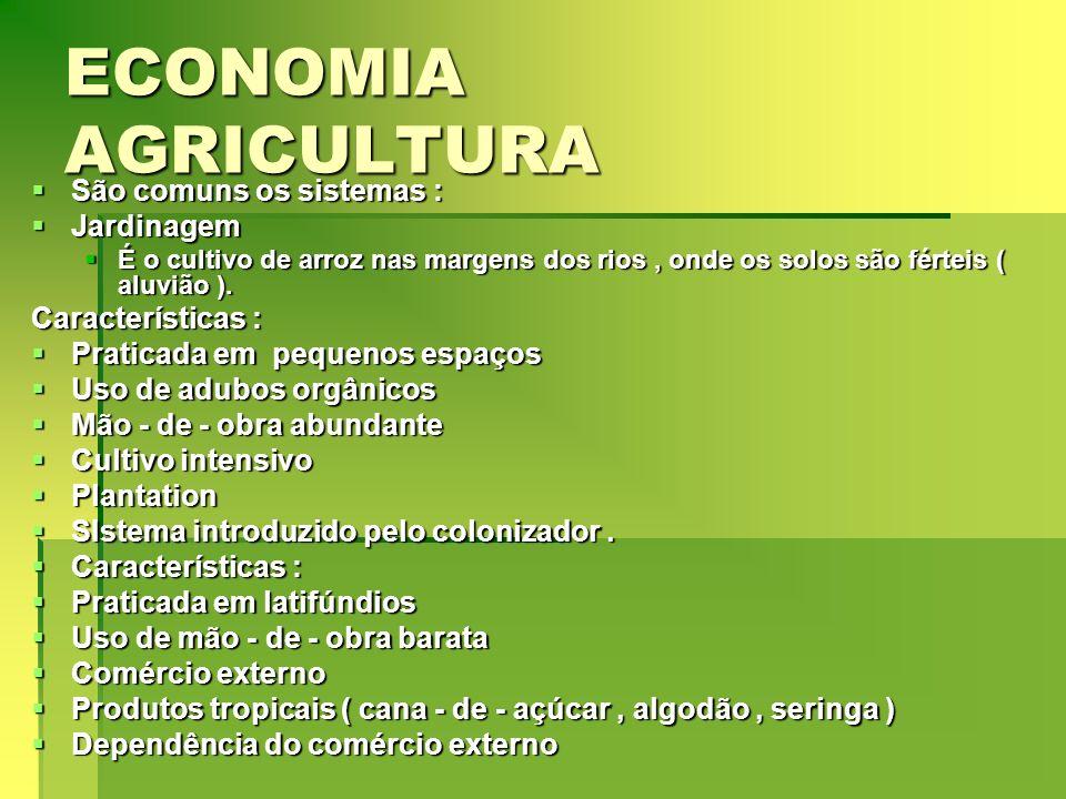 ECONOMIA AGRICULTURA São comuns os sistemas : Jardinagem