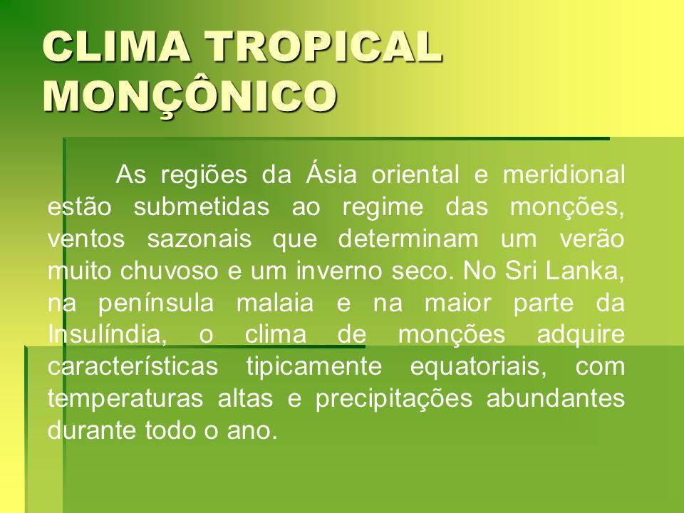 CLIMA TROPICAL MONÇÔNICO