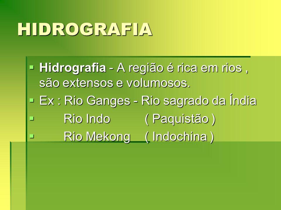 HIDROGRAFIA Hidrografia - A região é rica em rios , são extensos e volumosos. Ex : Rio Ganges - Rio sagrado da Índia.