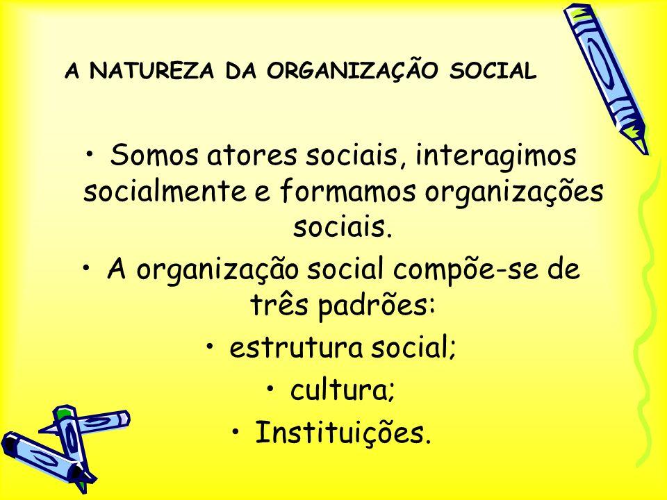 A NATUREZA DA ORGANIZAÇÃO SOCIAL