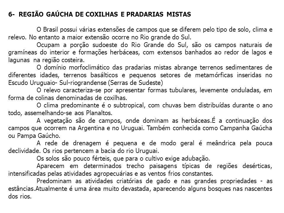 6- REGIÃO GAÚCHA DE COXILHAS E PRADARIAS MISTAS