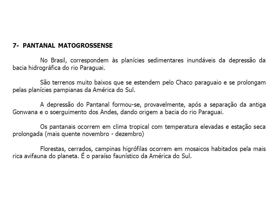 7- PANTANAL MATOGROSSENSE