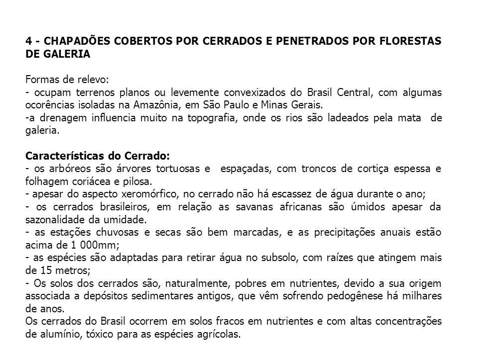 4 - CHAPADÕES COBERTOS POR CERRADOS E PENETRADOS POR FLORESTAS DE GALERIA