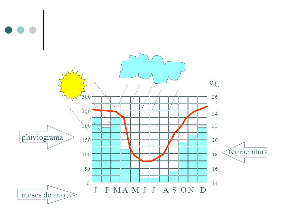 Climograma o C mm pluviograma temperatura J F M A M J J A S O N D