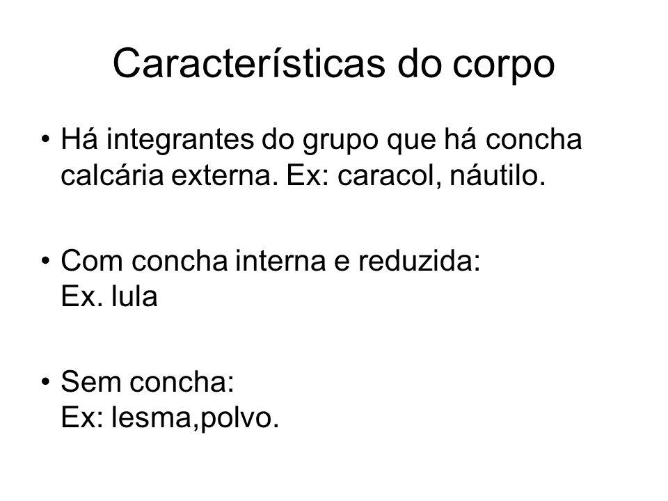 Características do corpo