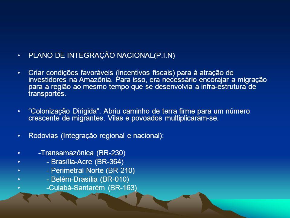 PLANO DE INTEGRAÇÃO NACIONAL(P.I.N)