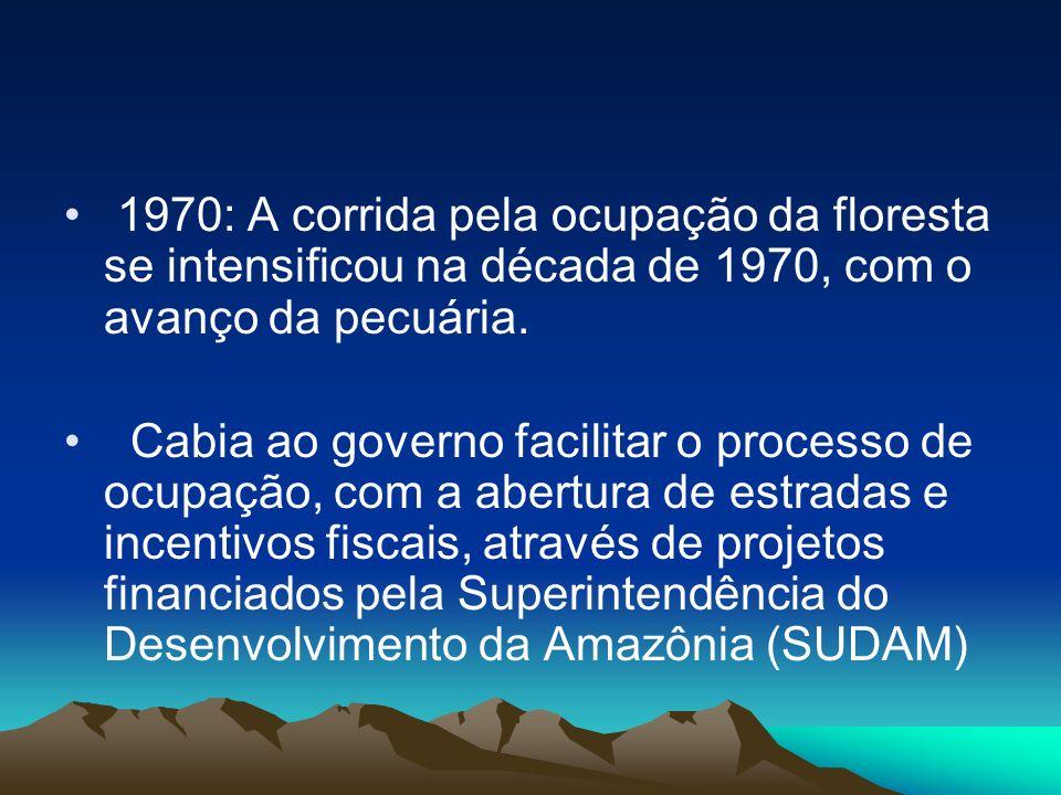 1970: A corrida pela ocupação da floresta se intensificou na década de 1970, com o avanço da pecuária.