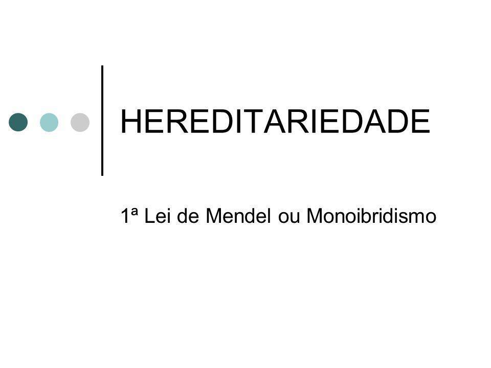 1ª Lei de Mendel ou Monoibridismo