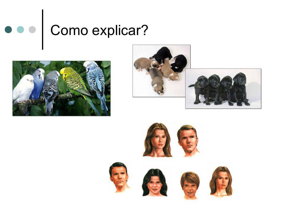 Como explicar