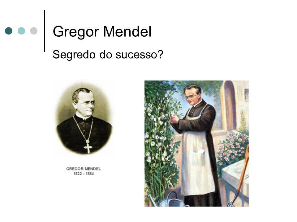 Gregor Mendel Segredo do sucesso
